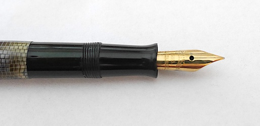 image for Pelikan Lizard 101